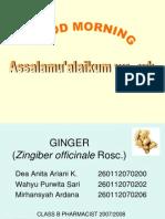 Ginger Presentation