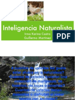 Inteligencia Naturalista 1