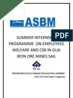 SUMMER INTERNSHIP                        PROGRAMME  ON EMPLOYEES WELFARE AND CSR IN GUA IRON ORE MINES SAIL.docx