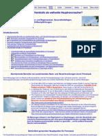 Chemtrails - Feinstaub - Chemtrails Als Weltweite Hauptverursacher - Www-chemtrails-Info-De