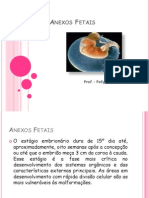 Anexos Fetais (1)