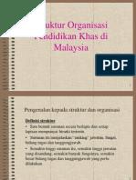 STRUKTUR ORGANISASI Pendidikan Khas