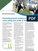 DA Facial Eczema Fact Sheet