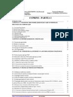 Viasuluminita Disertatie A