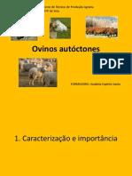 1- Ovinos autóctones de Portugal