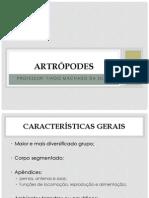 Apresentação 3 - Artrópodes