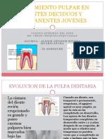 Endodoncia en Dientes Deciduos & Permanentes