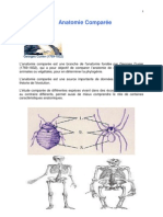 Protozoaires (1)