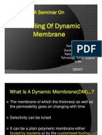 Modelling of Dynamic Membrane
