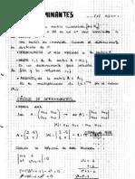 TEMA 0.- Determinantes y Matrices Regulares