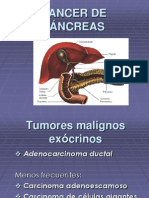 17019186 Cancer de Pancreas