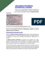 Papiloma Humano Tratamiento, Caracteristicas