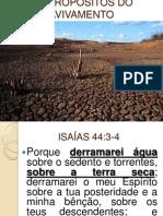 Avivamento Na Terra Seca Isaías 44:3-4