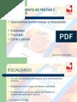 Industrializacion de Frutas y Hortalizas 1