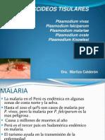 Malaria 14 Set 2012