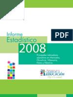 INFORME ESTADÍSTICO 2008