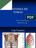 Anatomia de Torax