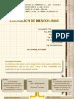 Valoracion de Bienechurias - Presentacion