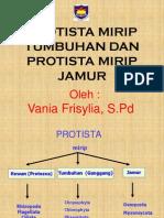 Protista Mirip Tumbuhan & Jamur Vania, S.Pd