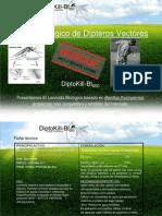Presentacion DiptoKill 2012