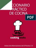 Diccionario Practico de Cocina w