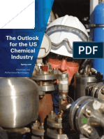 20101028US Chemical Industry Outlook 2010
