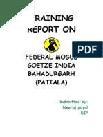 Final Report 001(3)