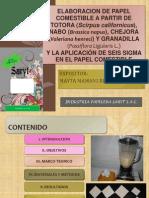 EXPOSICION PROCESOS papel