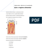 Dentição e regime alimentar
