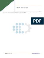 OpeCapataz Stock Proyectado