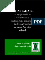 Cotas Raciais Amicus Curiae