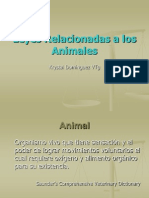 4. Leyes Relacionadas a Los Animales