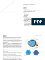 Diseño - Tema 2 - Percepción