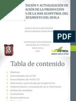 IMPLEMENTACIÓN Y ACTUALIZACIÓN DE INFORMACIÓN DE LA PRODUCCIÓN