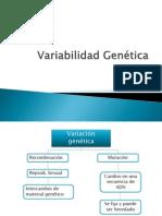Variabilidad Genética(12)