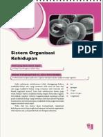 10. Sistem Organisasi Kehidupan