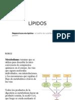 Expo Lipidos