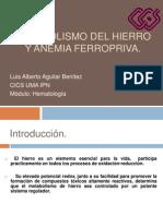 Metabolismo Del Hierro y Anemia Ferropriva
