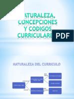 TEORIAS Y DISEÑOS CURRICULARES