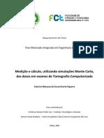 Medicion y Calculo, Utilizando Simulaciones Monte Carlo de Las Dosis en Examenes de Tomografia Computarizada[1]