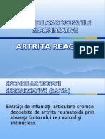 101_Artrita_reactiv