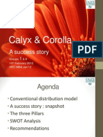 Marketing CALYX Presentation Final