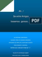 1193481357_voo_de_gansos[1]