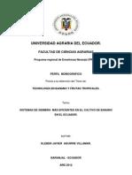 Principales Sistemas de Siembra Del Cultivo de Banano en El Ecuador