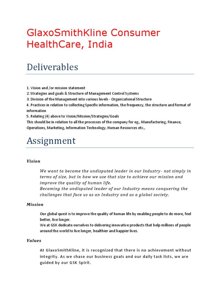 230 gskch final strategic management sustainability - World Vision Organizational Structure