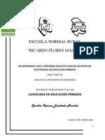 Documento Final2010