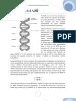 Genes y Genomas Trabajo Final