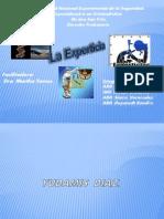 Presentación de la experticia..FINAAAL FINAAAL
