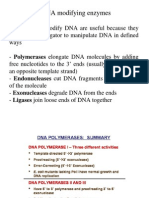 Chapter 5- DNA Modifying Enzymes