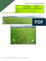 2012WS MET 2-Irrigated - Week 12 (September) Agusan del Norte